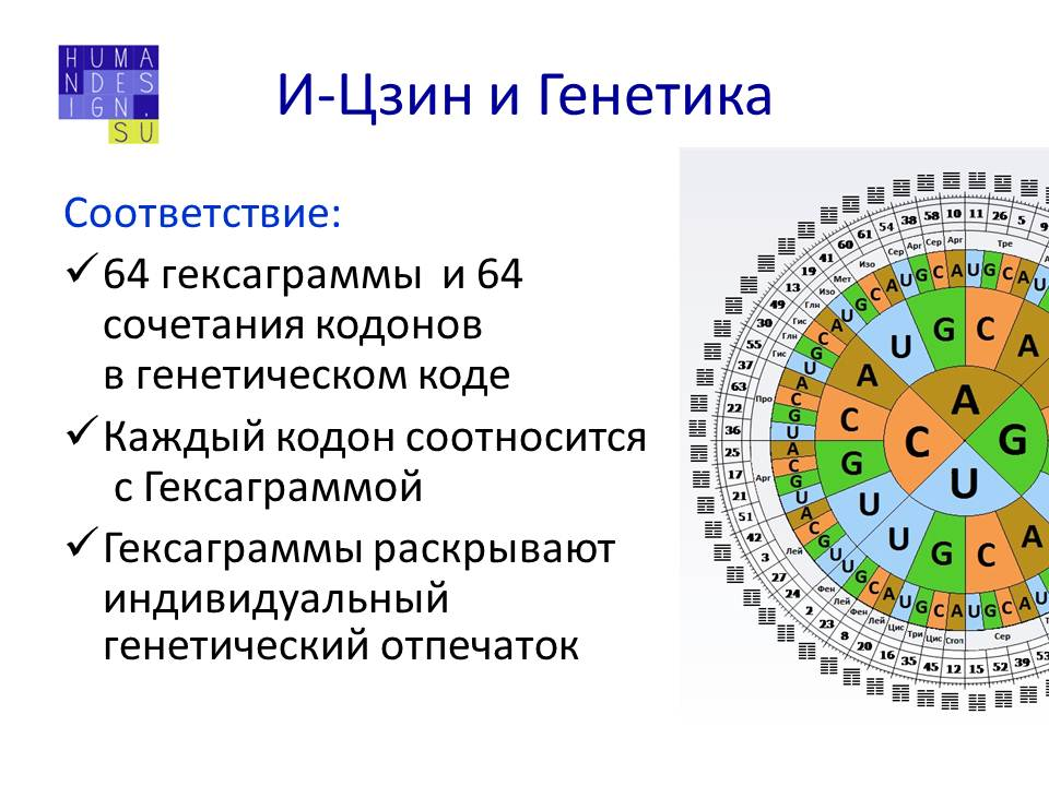 Определенные ворота дизайн человека 153